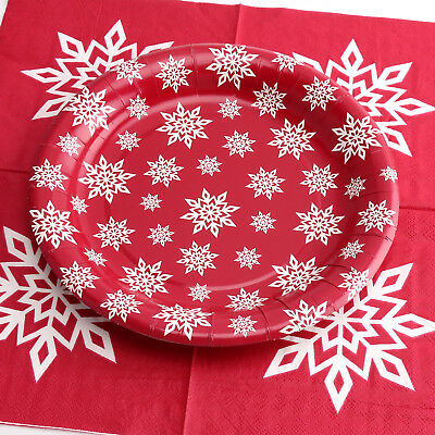 Snowflake Paper Plate (9