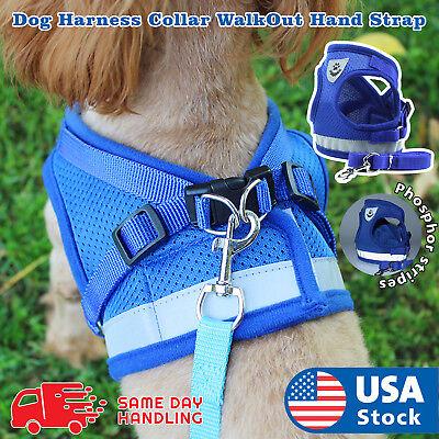 Small Light Dog Mesh harness Vest Collar soft chest strap XXS-L and Leash set -
