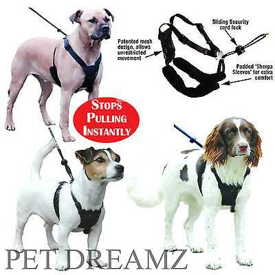 Sporn Non Pull Padded Dog Harness - Small Medium Large