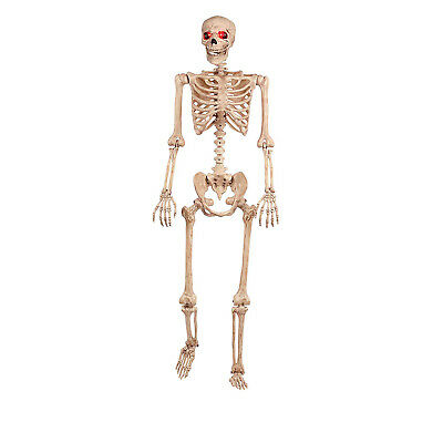 5ft Crazy Bones Life Size Skeleton Light-Up Eyes Halloween Party Prop Decoration (Crazy Halloween Party)