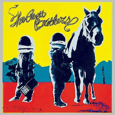 The Avett Brothers - True Sadness [CD] Brand New & Sealed