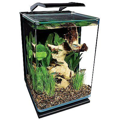 Curved Glass 5Gal Aquarium Pet Fish Habitat Water Tank LED Light Filter Pump New