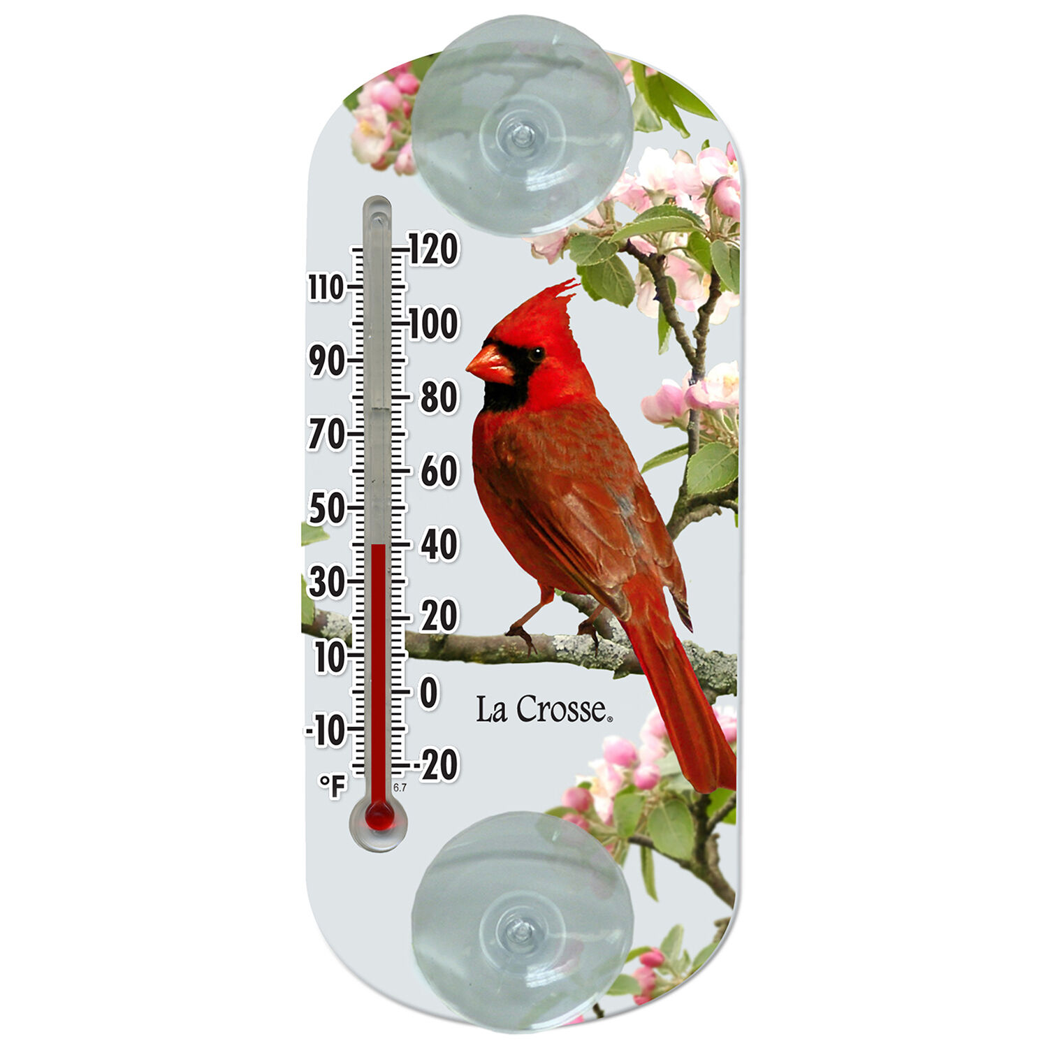 LaCrosse Technology 204-1081 8 Cardinal Tube Thermometer