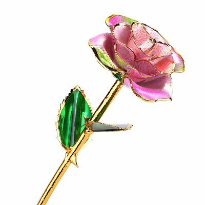 24k Gold Rose Flower with Long Stem Rose Dipped in Gold Gift for Women Girls on