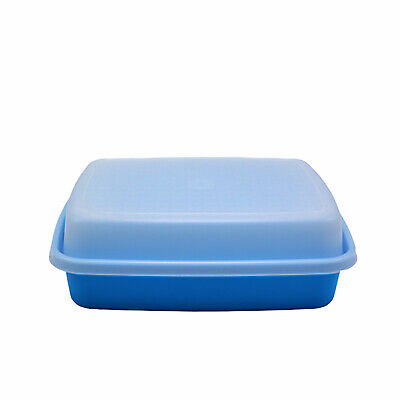 Tupperware Season and Serve Junior Marinade Container Salt Water Taffy Blue