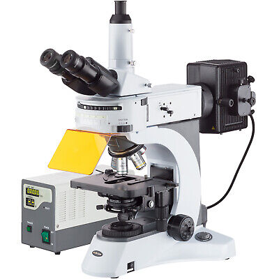 40x-1000x Upright Fluorescence Microscope With Rotating Multi-filter Turret