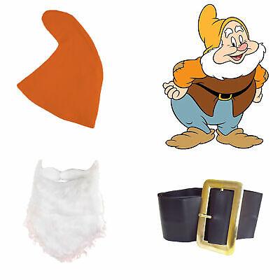Snow White Seven Dwarfs Fancy Dress HAPPY SET Orange Hat Beard Belt Fairy Tale - Seven Dwarfs Fancy Dress Costumes
