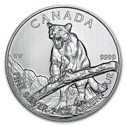2012 1 oz Silver Canadian Cougar