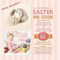 REAL BUNNIES - THIS SATURDAY- EASTER MINIS