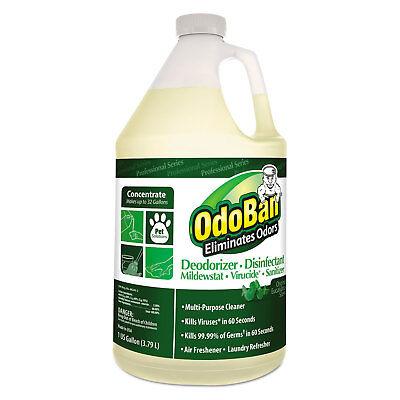 OdoBan Concentrated Odor Eliminator Eucalyptus 1 gal Bottle 911062G4EA