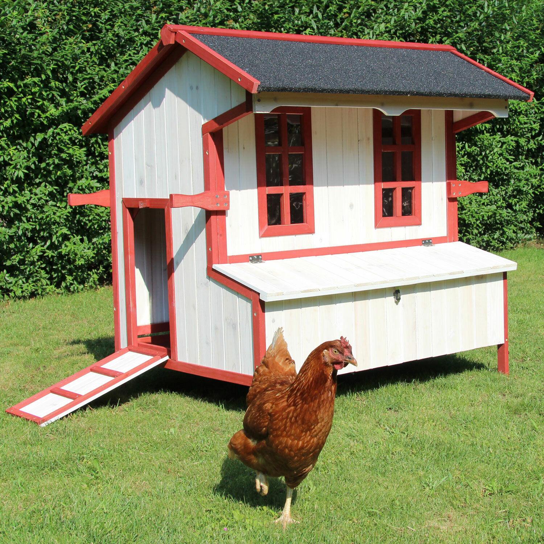 Hühnerhaus Hühnerstall Kleintierstall Küken Hühnervoliere Cordula von Zoo XXL