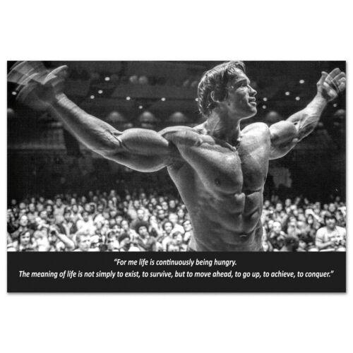 Arnold Schwarzenegger Motivational Poster - High Quality Prints
