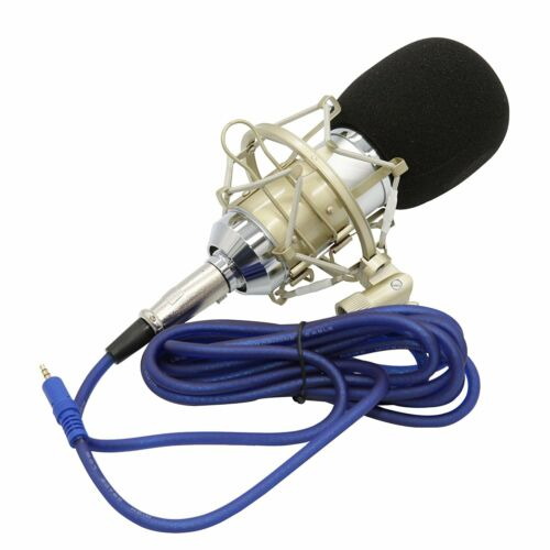 Professional Condenser Studio Microphone for Recording Singing Voice-Overs
