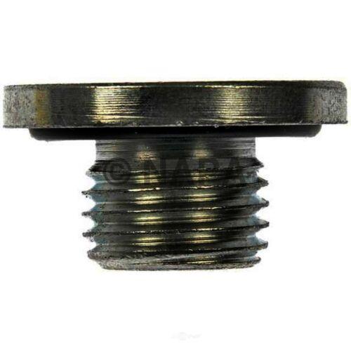 16 Valves NAPA//SOLUTIONS-NOE 7041380 Engine Oil Drain Plug-DOHC