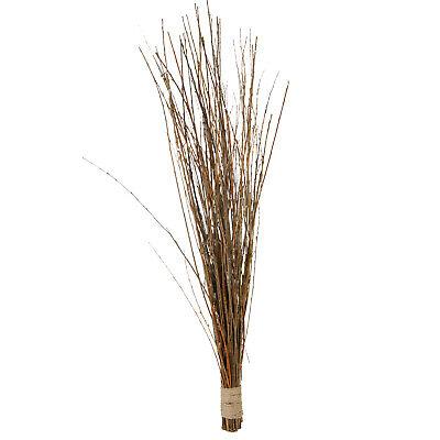 Weidenstrauch Grasbusch Weide Bündel Grasbündel Ziergras Naturgras braun 75cm