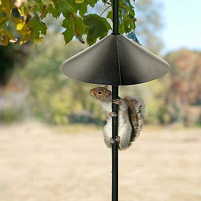 Squirrel Baffle Protect Bird Feeder Birdhouse Proof Outdoor Garden Animal Traps