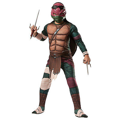 Teenage Mutant Ninja Turtle's Raphael Child Boys Costume (Ninja Turtle Costume Raphael)