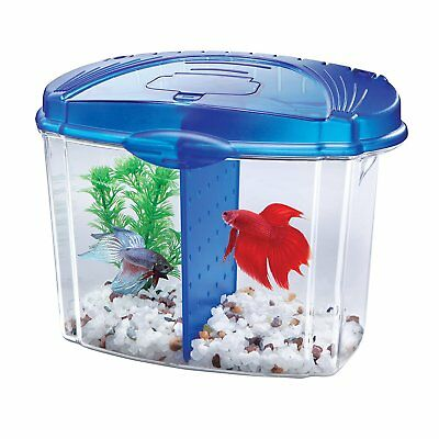 Betta Fish Tank Starter Kit, Half Gallon, Blue, NEW