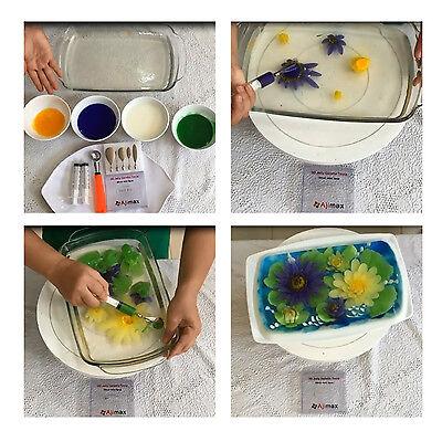 3D Gelatin Art Tools Set Cake Party Jello  1 Syringe 20Cc 1 Scoop Free Ebook New