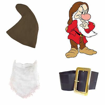 Snow White Seven Dwarfs Fancy Dress GRUMPY SET Brown Hat Beard Belt Fairy Tale - Seven Dwarfs Fancy Dress Costumes