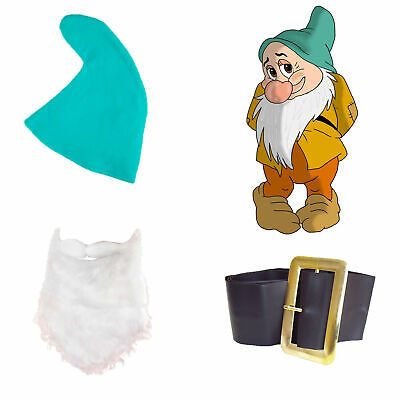 Snow White Seven Dwarfs Fancy Dress BASHFUL SET Hat Beard Belt Fairy Tale - Seven Dwarfs Fancy Dress Costumes