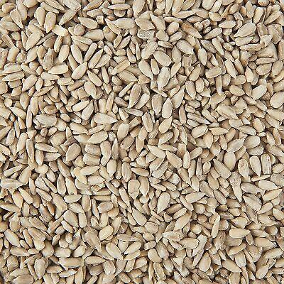 Premium Sunflower Hearts Wild Bird Seed Food Kernels 5kg Bag