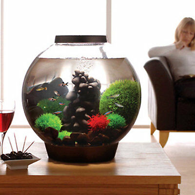 biOrb 8 Gallon Aquarium Kit with Light, Black