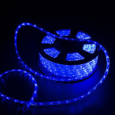 100' 2 Wire LED Rope Light In/Outdoor Christmas Decorative Home Party Blue New