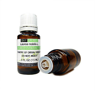 Bay Laurel Essential Oil  15 Ml  100  Pure Therapeutic