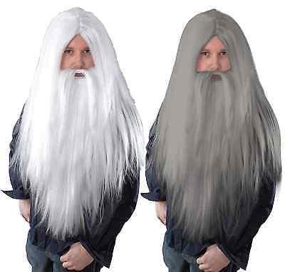 Costume Gris Pour Homme (long pour hommes Gris Blanc Magicienne vieil barbe & PERRUQUE COSTUME)