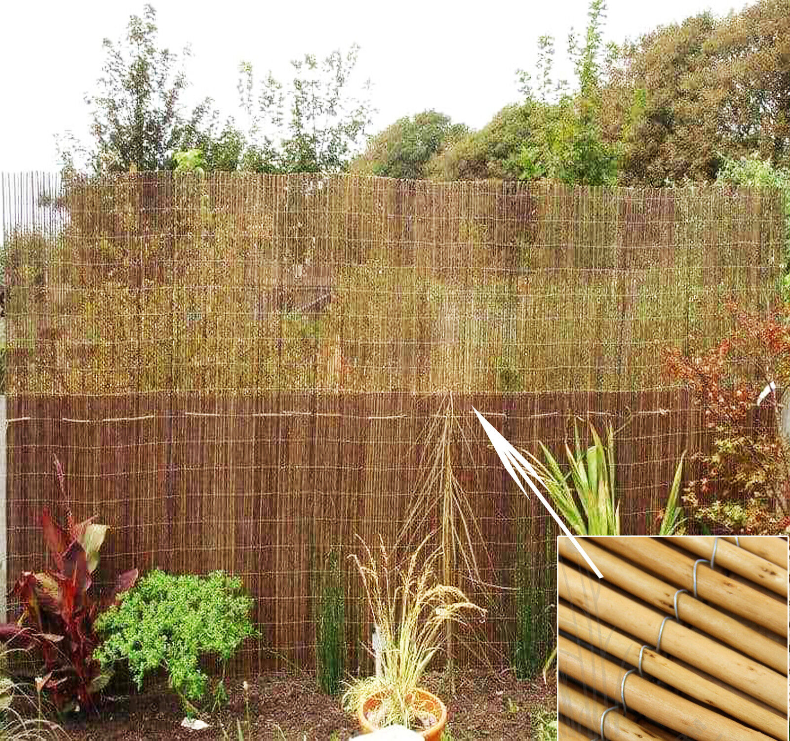 NATURAL FENCE PEELED REED SCREENING GARDEN FENCING PRIVACY PANEL ...