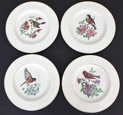 Pickard China 4 PLATES Salad Dessert BIRDS FLOWERS Ivory Gold Trim Set Four