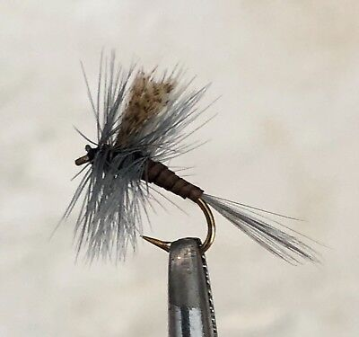 Fliegenset realistic Foam Flies Angelsport
