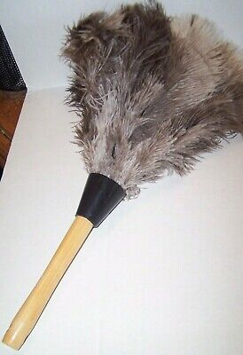 Maid Feather Duster (13