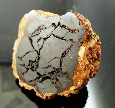 29.5 gram Canyon Diablo graphite half nodule meteorite - Ex Branch #