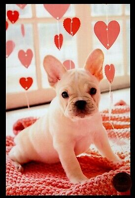 Valentine Puppy Dog Pink Red Hearts Blanket -  Valentine's Day Greeting Card NEW