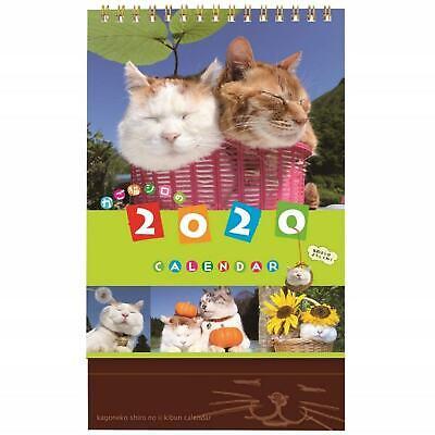 2020 DESK CALENDAR Kago-Neko Shiro Japanese Popular Kawaii Cats Made in Japan FS