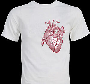 Big heart anatomy anatomical illustration drawing art for How to make money selling custom t shirts