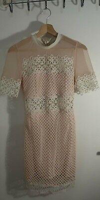 Weiß Sheer (Top Shop Petite rosa und weiss minikleid mit sheer netz spitze besatz gr 36)