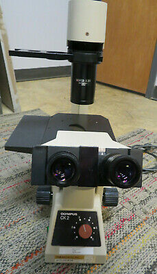 Olympus Ck2 Inverted Phase Microscope 3 Objective Lenses - Used