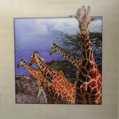 Giraffes Running - 3D Lenticular Poster -16 x16 Print