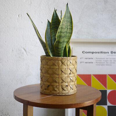 Vintage Mid Century Bamboo Plant Pot Planter Cover Boho Tiki Retro
