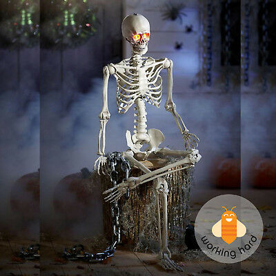 POSEABLE SKELETON 5 Ft Life Size Hanging Halloween Prop Decoration LED Lit Eyes
