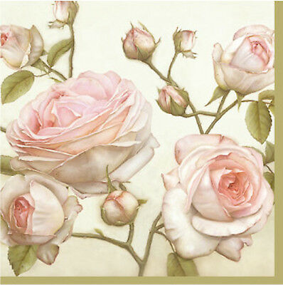Decoupage Paper Cocktail Napkins Lucy Beauty Roses Cream Pink Vintage 40pcs](Pink Cocktail Napkins)