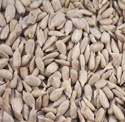 20kg Premuim Sunflower Hearts - Bakery Grade Kernels - Wild Bird Food