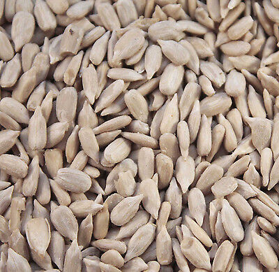 25KG  SUNFLOWER HEARTS FOR WILD BIRD FEEDING ( 20kg plus  5kg )