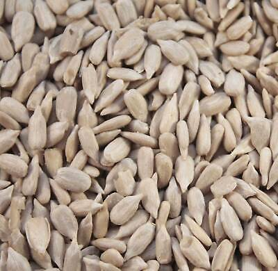 5kg Sunflower Hearts Premium Bakery Grade Dehulled Kernels for Wild Birds