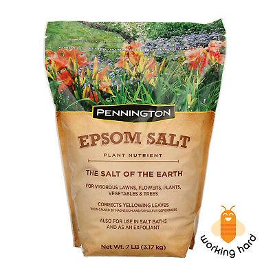 Pennington Epsom Salt 7 Lb Organic Natural Plant Flower Vegetable Tree Growth
