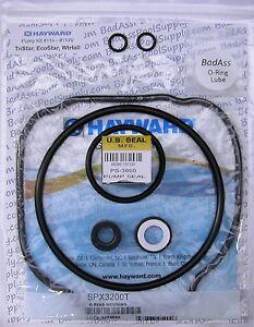 Hayward TriStar, EcoStar, Waterfall, #114 O-Ring Repair-Rebuild Kit