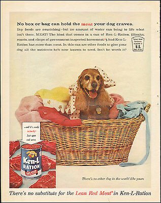 1961 vintage AD KEN-L Ration Dog Food Cute puppy in a clothes basket  091215